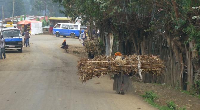 Earth Day in Entoto Hills – eucalyptus, erosion och vedbärande kvinnor